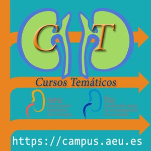 Cursos Temáticos en Urología